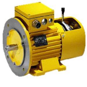 מנועים חשמליים עם מעצור